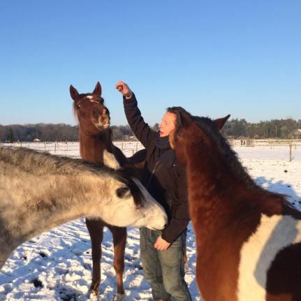 thomas-en-paardjes-in-de-sneeuw